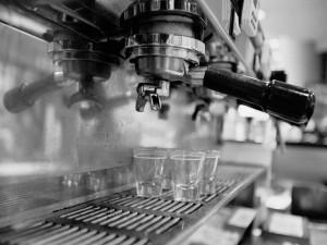 Portafiler of the La Marzocco Espresso Machine